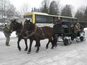 Sleigh ride Salzburg